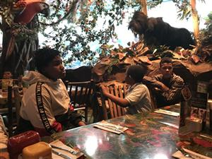 Rain-forest Cafe Educational Trip